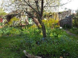 Visite du jardin au naturel de l'association Hirondelle