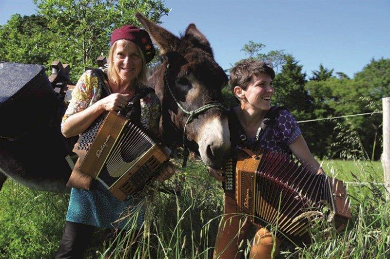 Sur les chemins de l'âne, balade musicale et sensorielle au rythme de l'âne