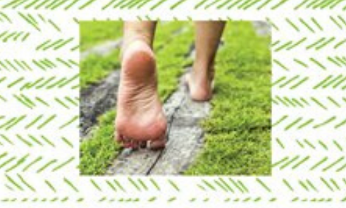 Conférence « La santé, c'est le pied »
