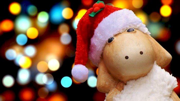 Ciné de Noël et Atelier