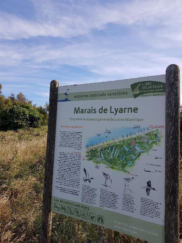 Au coeur du marais de Lyarne