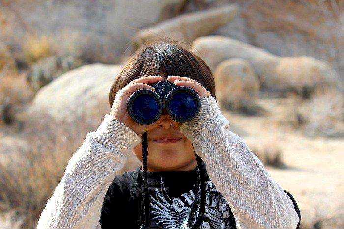 Observation des oiseaux du marais du Fresnier