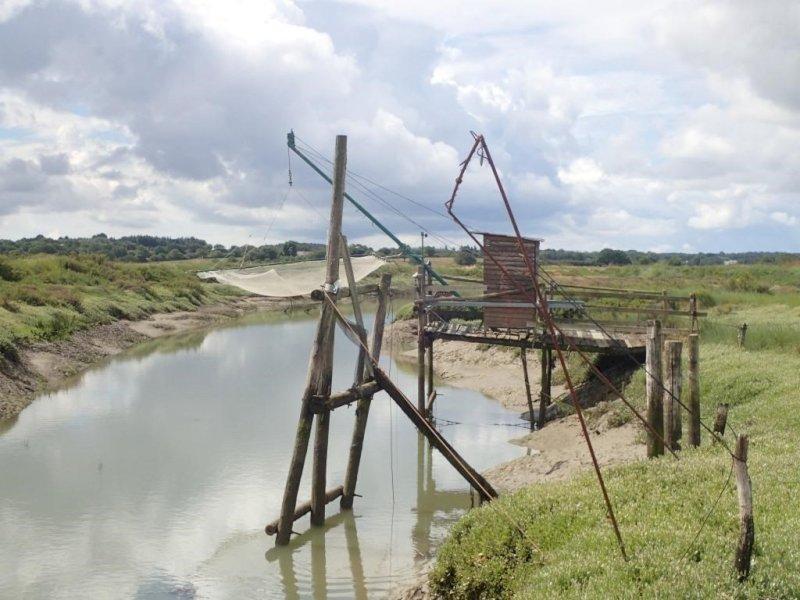Balade dans le marais de Rostu, CPIE Loire Océane
