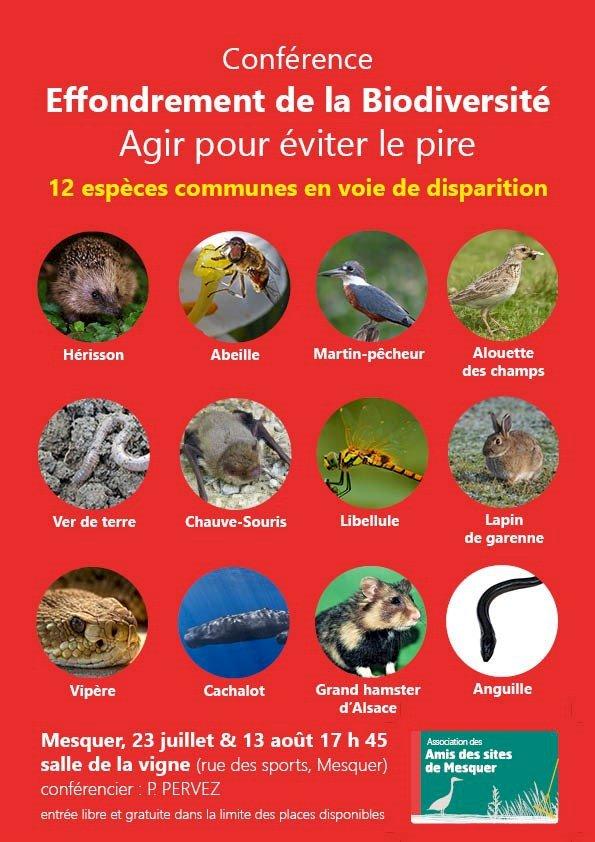 Effondrement de la biodiversité : agir pour éviter le pire