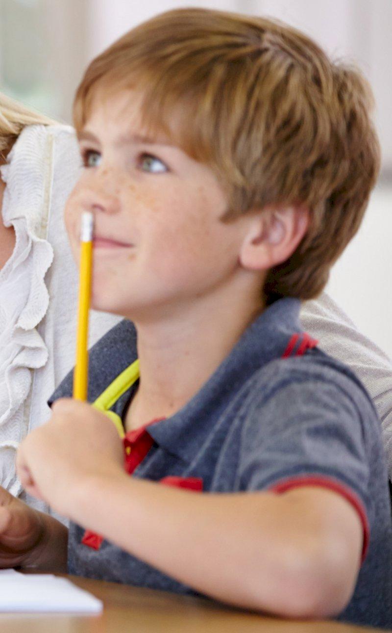 Assistance scolaire personnalisée - cours particuliers en ligne