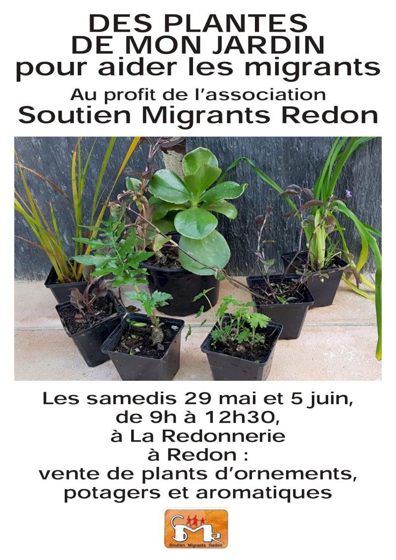 Vente spéciale de plants