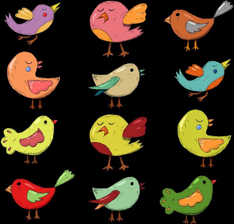 Sortie Nature - Le chant des oiseaux - Plaine de Mazerolles à Sucé-sur-Erdre
