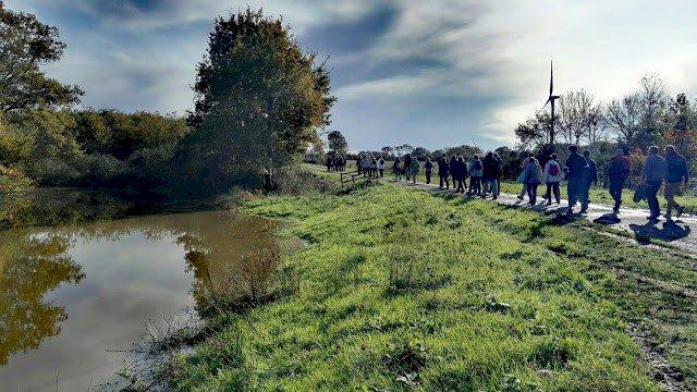 Les marcheurs du jeudi brévinois . Marche nordique