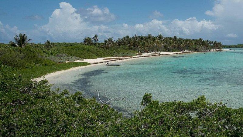 Pornic. L'archipel des Petites Antilles sur grand écran