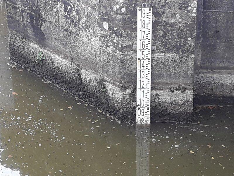 Le règlement d'eau du bassin versant Brière Brivet : participez à la réflexion