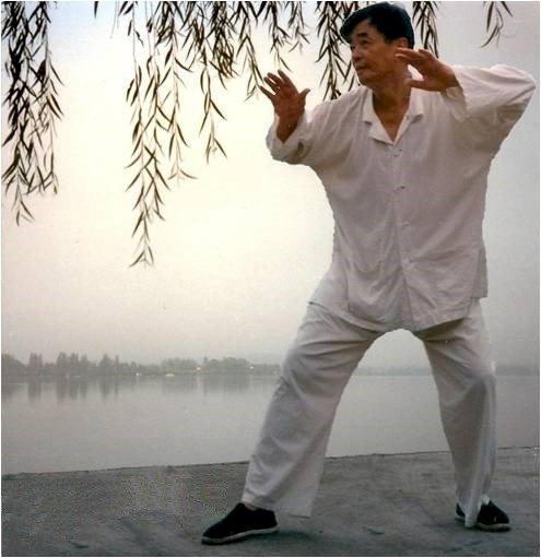 Reprise des cours de Taïji Quan (débutants)