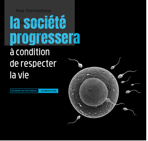 Réflexions sur le projet de loi bioéthique