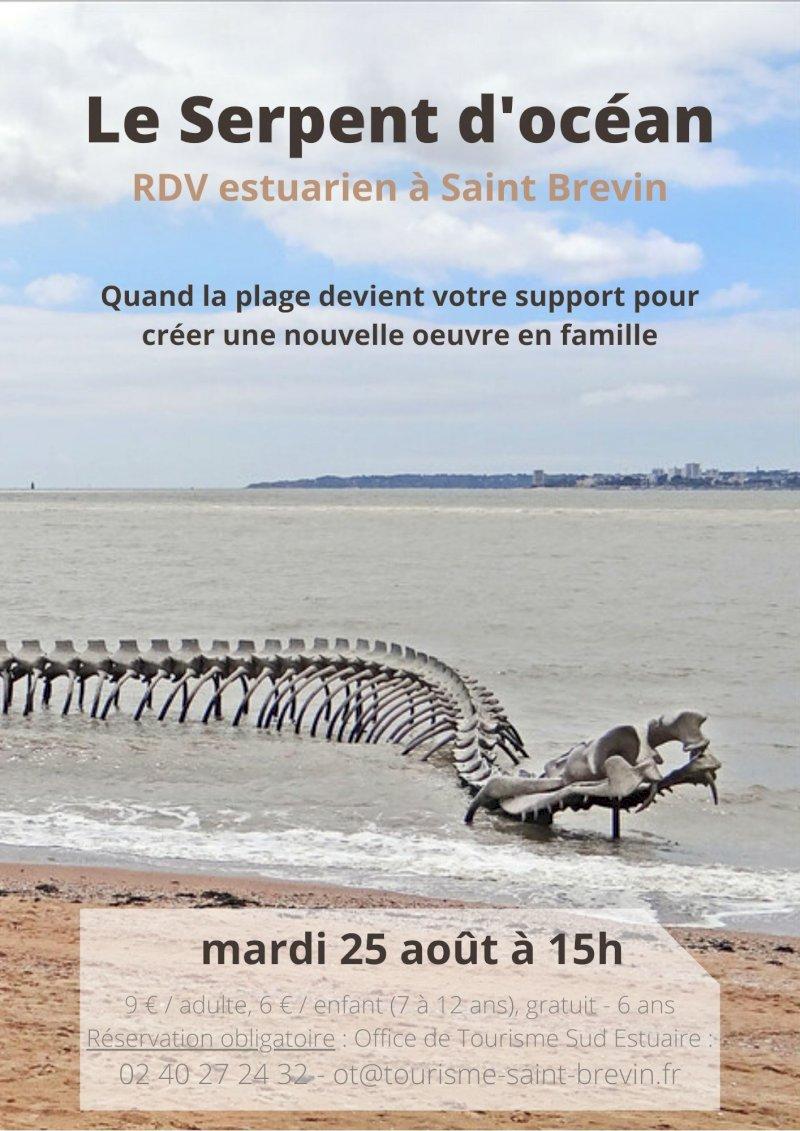 Rendez-vous Estuarien : Le Serpent d'Océan