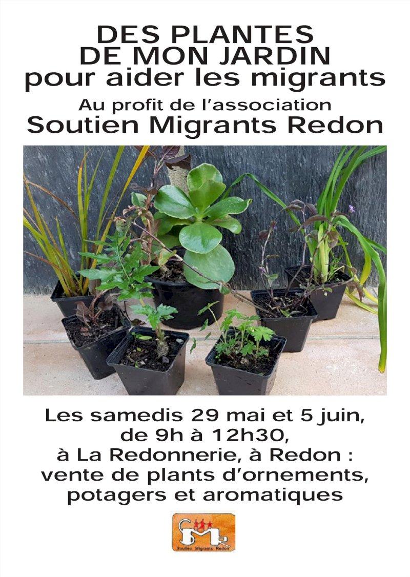 Vente de plants légumiers, d'ornement et artisanat au profit des migrants à la Redonnerie..