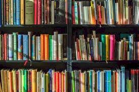 Bibliothèque annexe de Beslé-sur-Vilaine