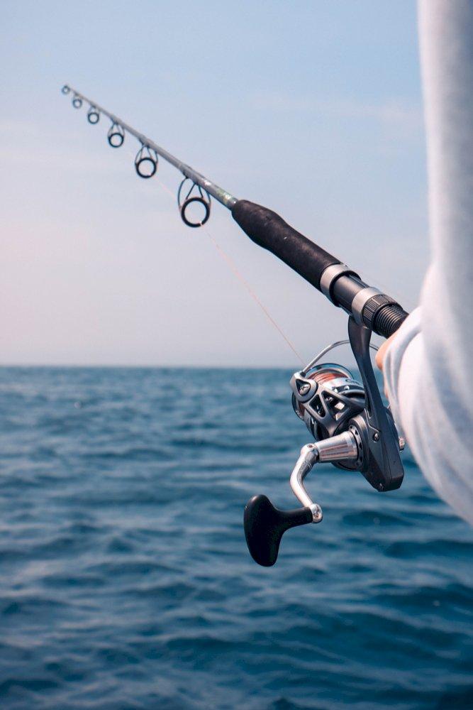 Atelier d'initiation à la pêche