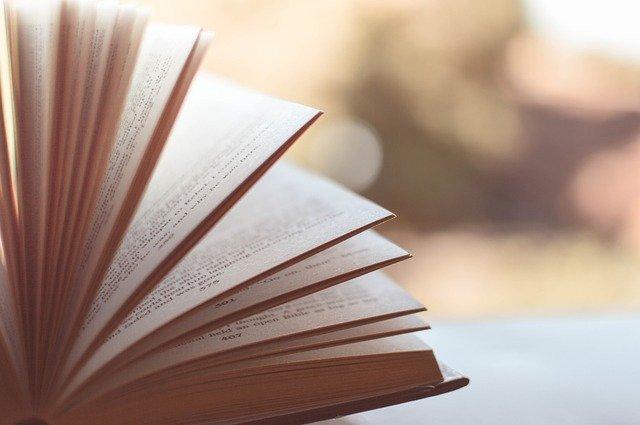 Les nuits de la lecture Edition 2021 - ANIMATIONS ANNULEES -> DES ANIMATIONS VIRTUELLES SONT PROPOSEES