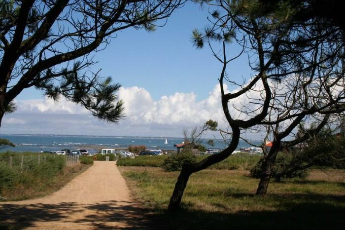 Découverte de la Réserve naturelle régionale Pointe Saint-Gildas