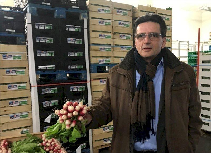 VIDEO. Fruits et légumes : un marché de gros pour les pros va ouvrir à Pornic