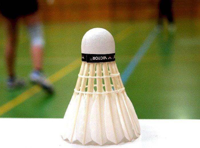 Portes ouvertes du Badminton de Casson
