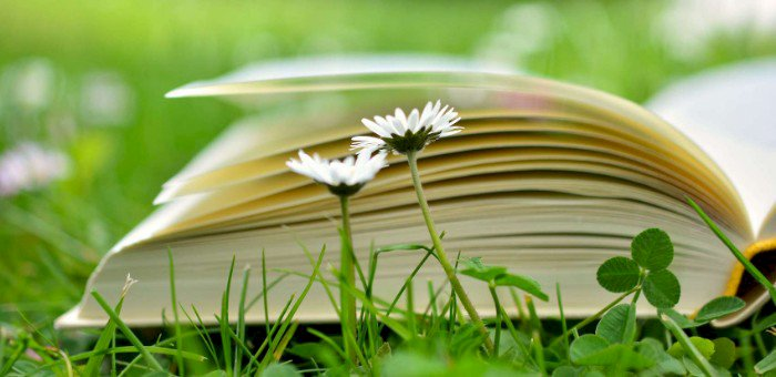 Atelier sophrologie : sensorialité du livre