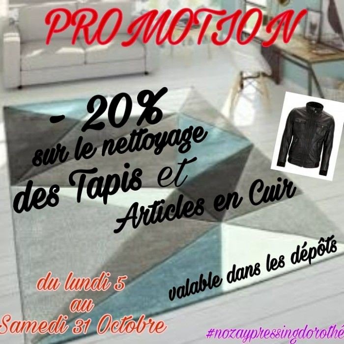 Promotion sur le nettoyage des cuirs et tapis cheez Nozay Pressing !!!