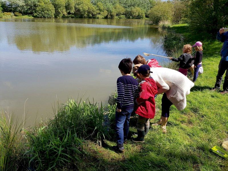 Activités spéciale enfants « Course aux insectes »