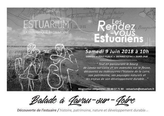Balade découverte de l'estuaire à Lavau-sur-Loire