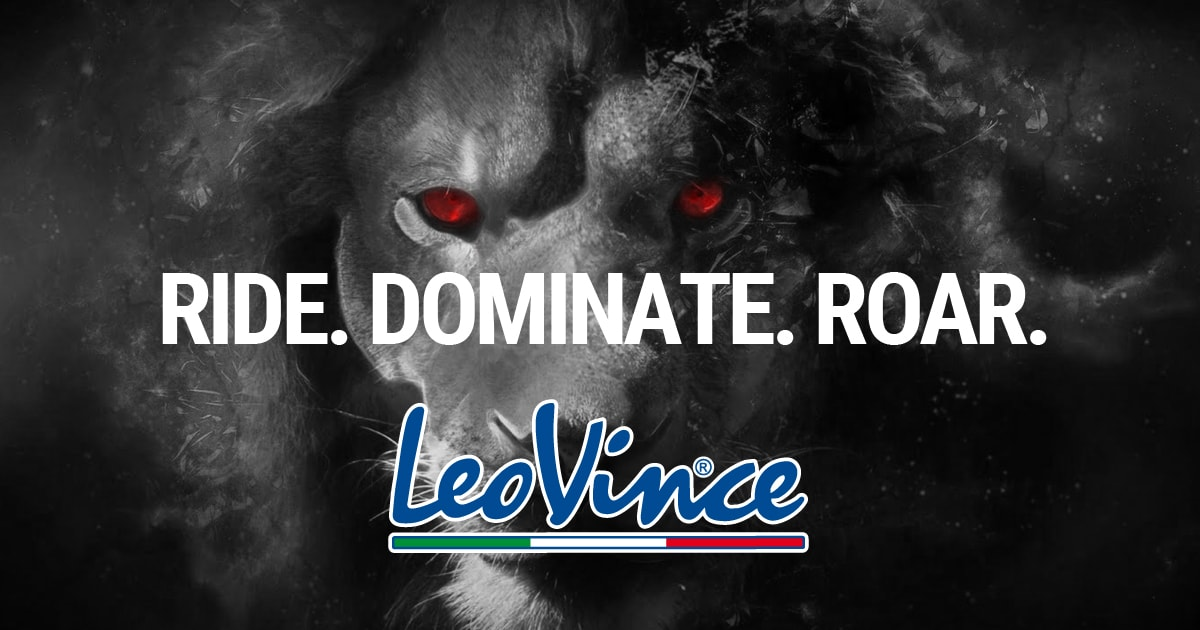 www.leovince.com