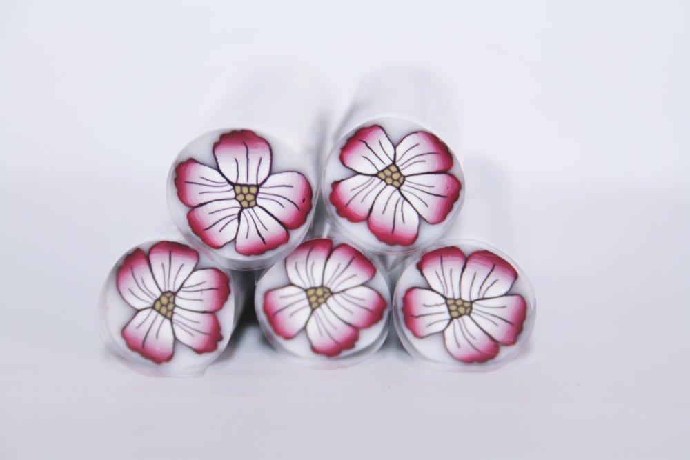 Fleur tropicale, canne polymère crue