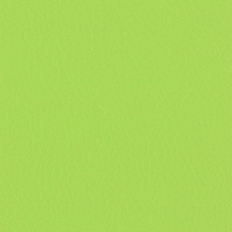 Simili cuir Skaï souple effet grainé Vert pomme mat / 10 cm