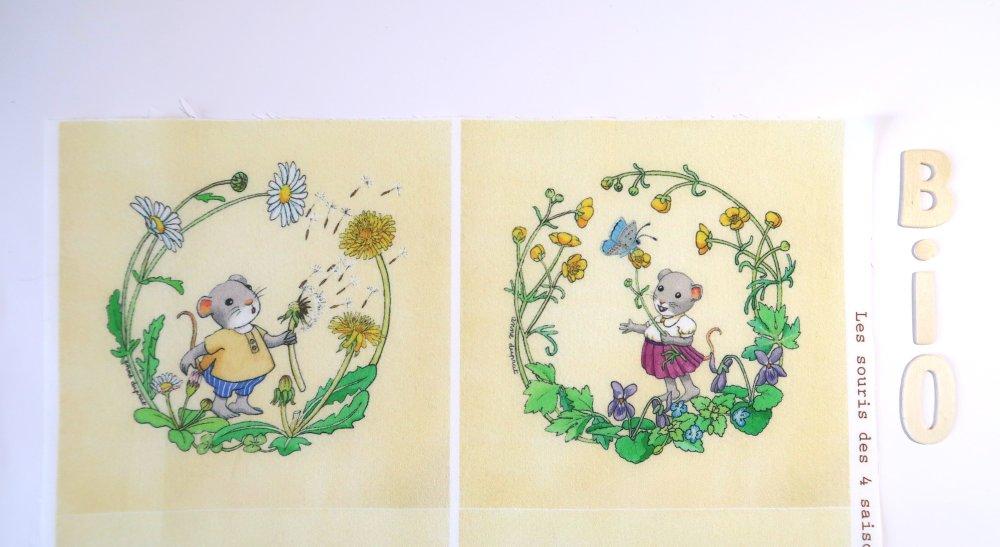 Lot de 6 coupons illustrés, les souris des 4 saisons sur fond jaune clair