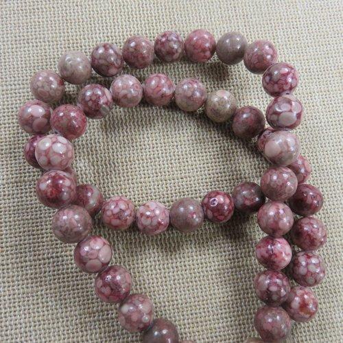 Perles chrysanthème 8mm fossile corail - lot de 10
