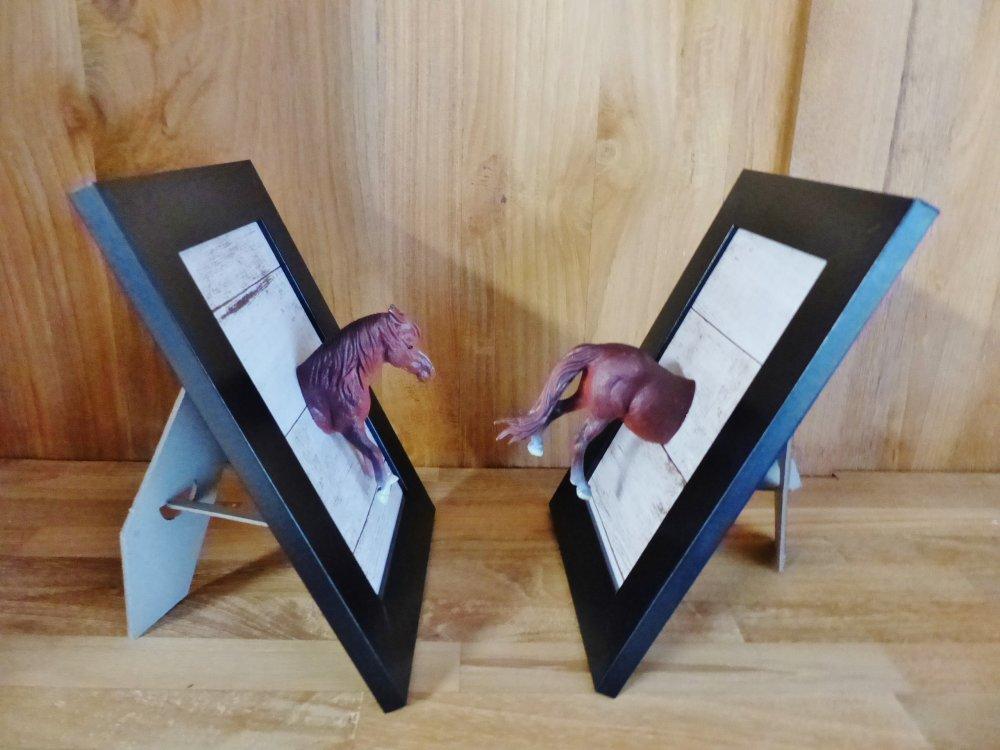 2 cadres CHEVAL 3D tête gueule et postérieur relief décoration animal