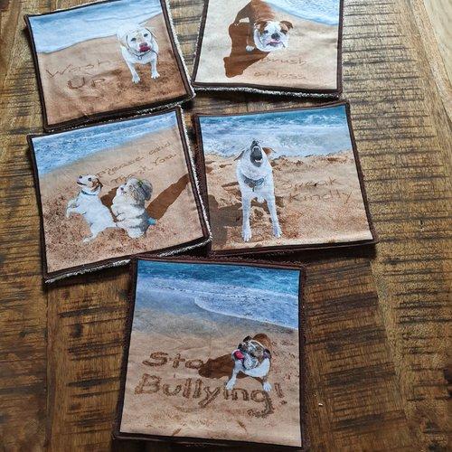 """Lot 5 lingettes lavables """"chiens sur la plage"""""""