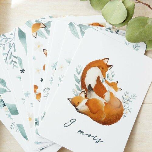 Cartes étapes bébé de 1 à 12 mois écureuils