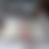 Petite trousse plate aux hortensias