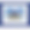 Otarie à fourrure d'amsterdam, faune aquatique