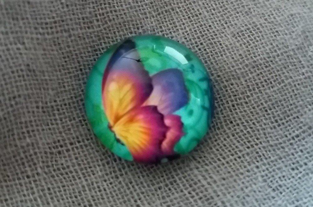 Cabochon Rond motif Papillon 20 mm en Verre, dans les tons de Vert Turquoise, Rose, Violet et Jaune Orangé
