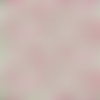 Tissu liberty col. flower show midsummer - 110x50cm