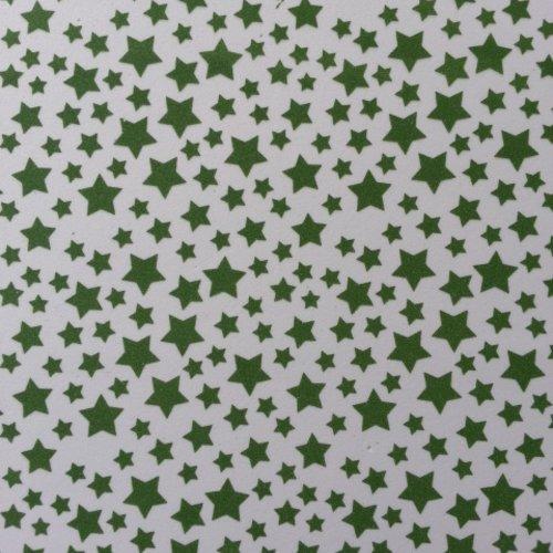 Feuille de mousse étoilée 21*29.7cm vert et blanc