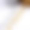 1 mètre de cordon  feuillage argent