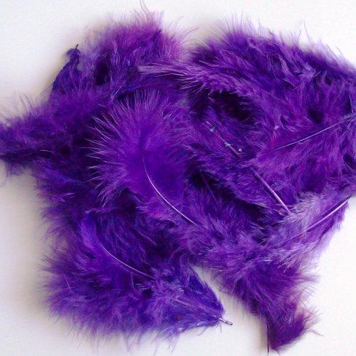 Lot 25 plumes coloris violet foncé