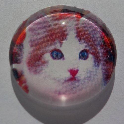 Cabochon de verre chat, rond, 20 mm,