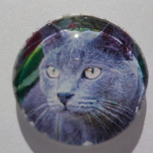 Cabochon de verre chat gris, rond, 20 mm