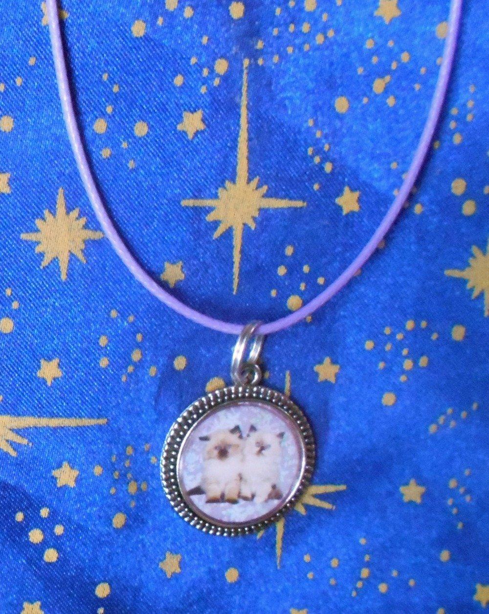 Médaillon en alliage argent/étain avec dot's image chatons tons blanc et noir sur fonds mauve de 20mm de diamètre.