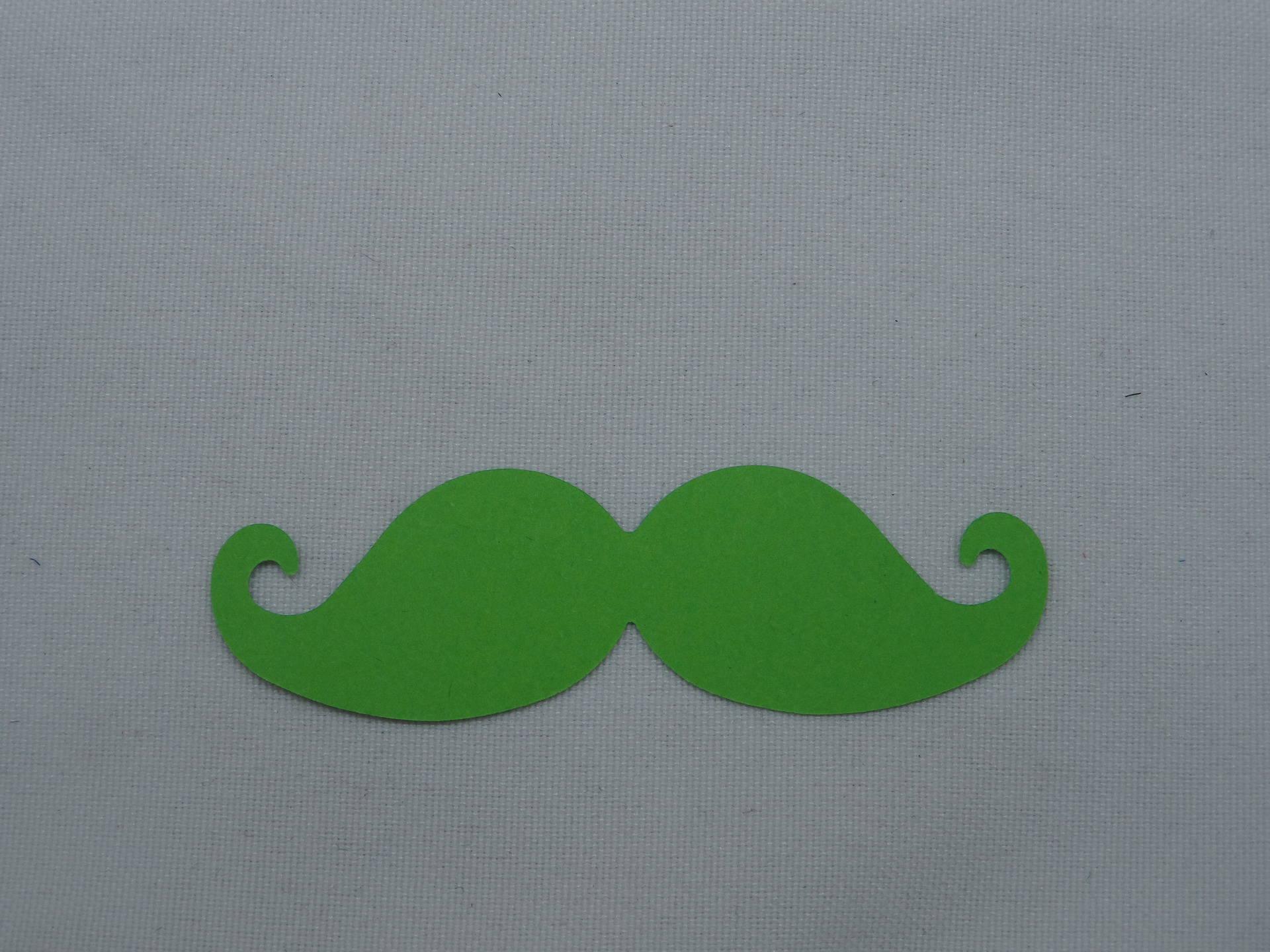 """n°359 moustache en papier """" vert pomme""""  pour  embellissement"""