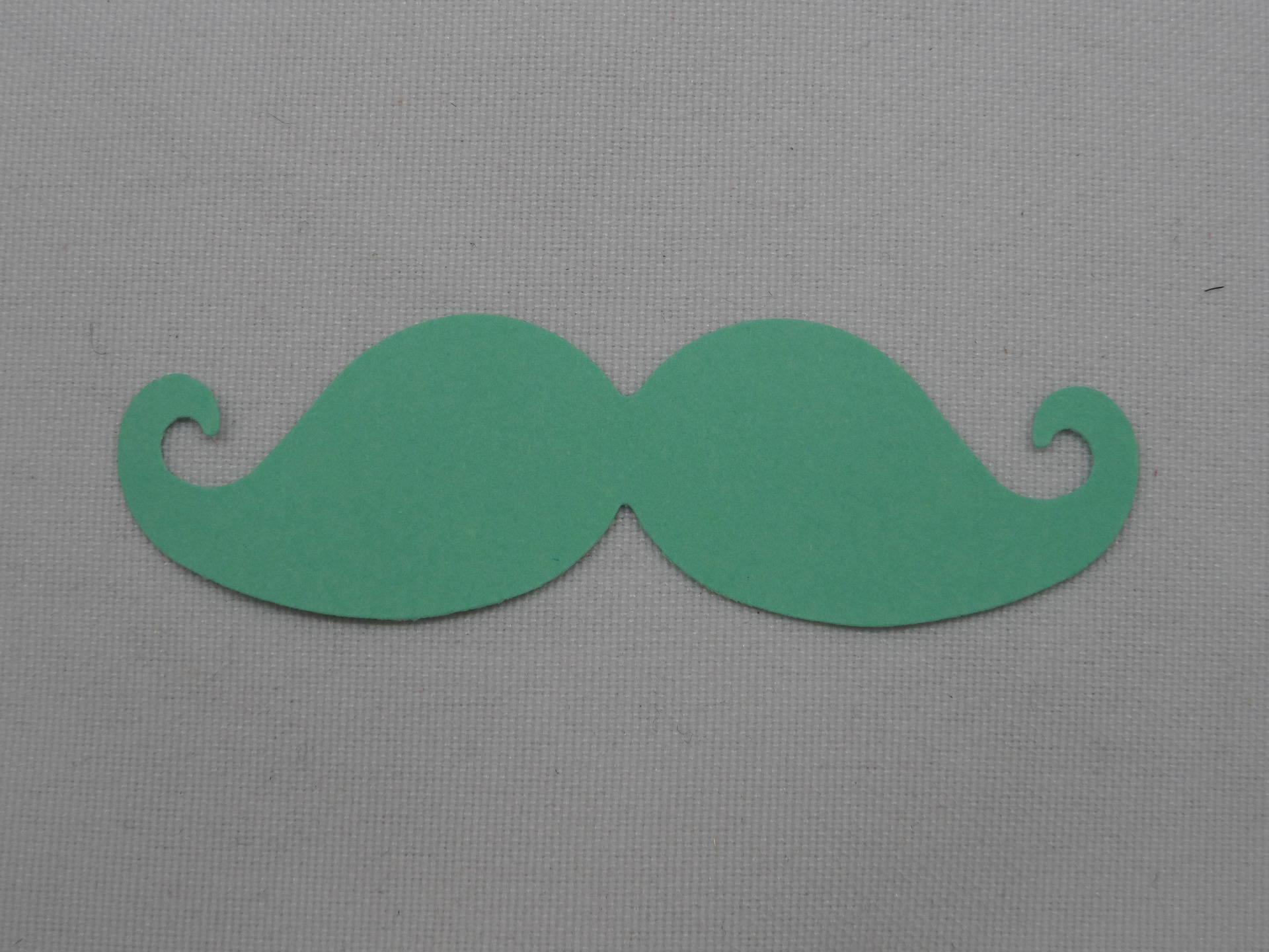 n°359 moustache en papier  vert  pour  embellissement