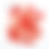Confettis renards - corail pêche