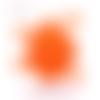 Confettis renards - couleur au choix